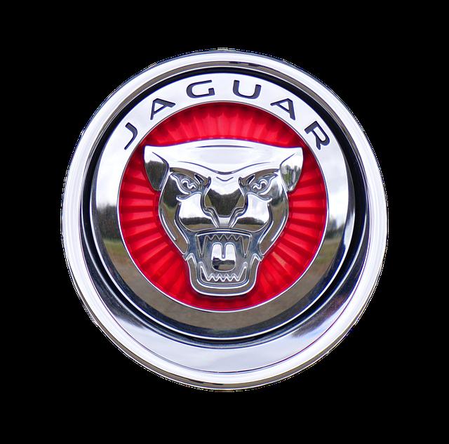 symbol jaguar